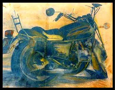 Goldwing-22-x-28-pastel